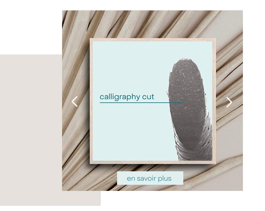 pourquoi-calligraphy-cut-2_mobile