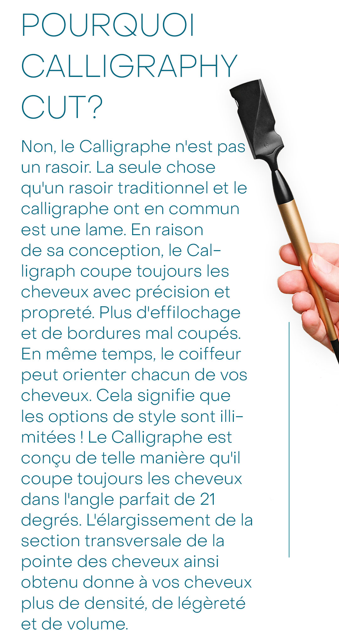 pourquoi-calligraphy-cut_mobile